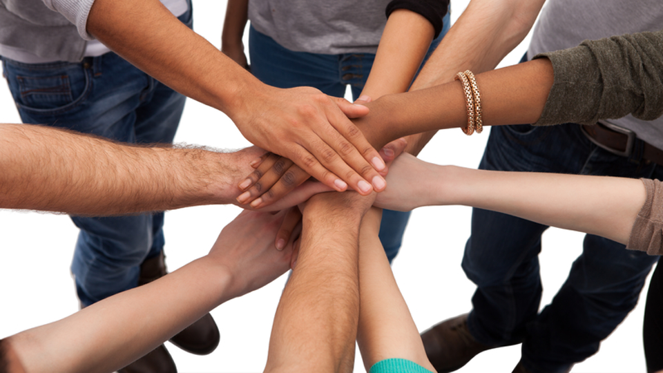 Build a resilient team and organisation
